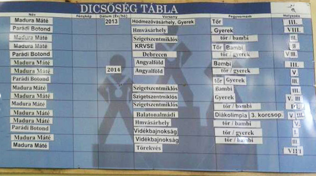 dicsoseg_tabla_2014jun23